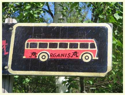 bussikyltti.jpg