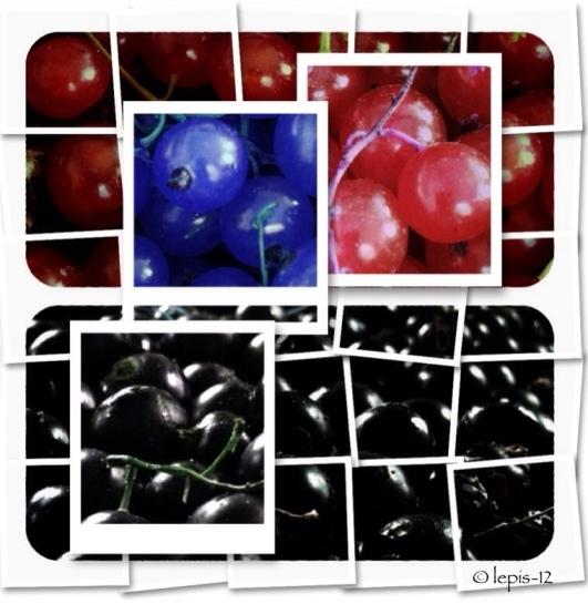 20120810-232500.jpg